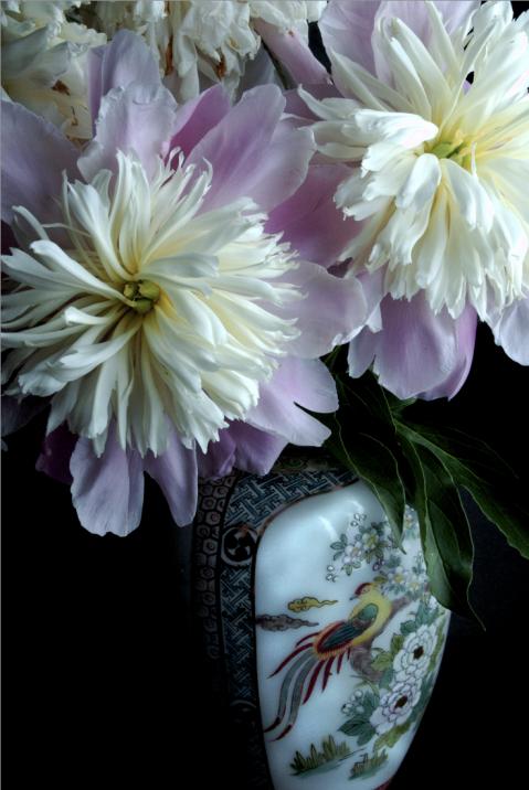 flower1_1